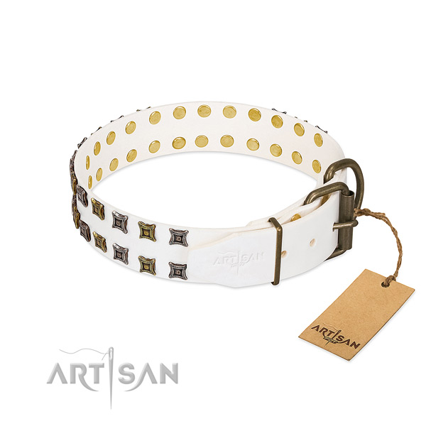 Full grain leather collar with extraordinary embellishments for your canine