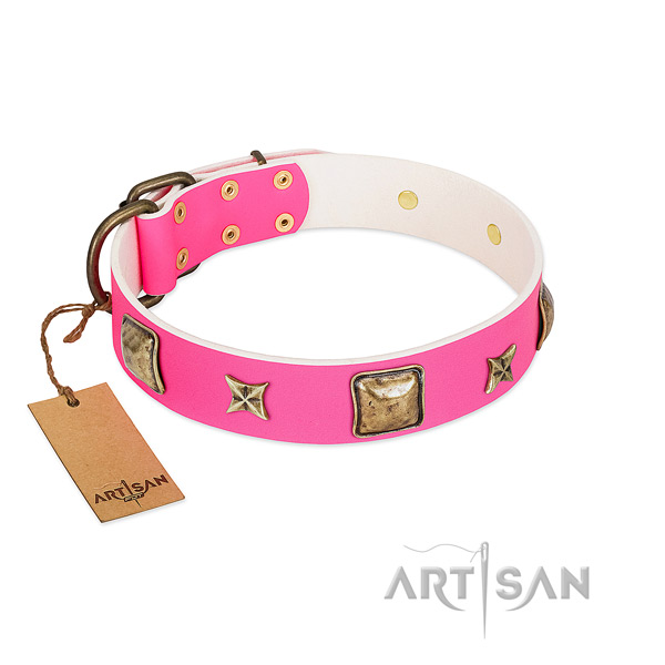 Natural leather dog collar of reliable material with unique decorations