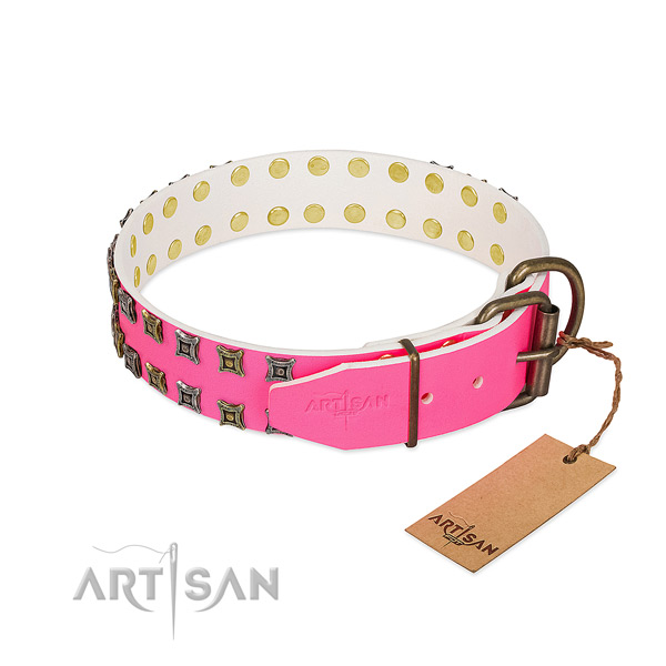 Full grain natural leather collar with awesome studs for your doggie