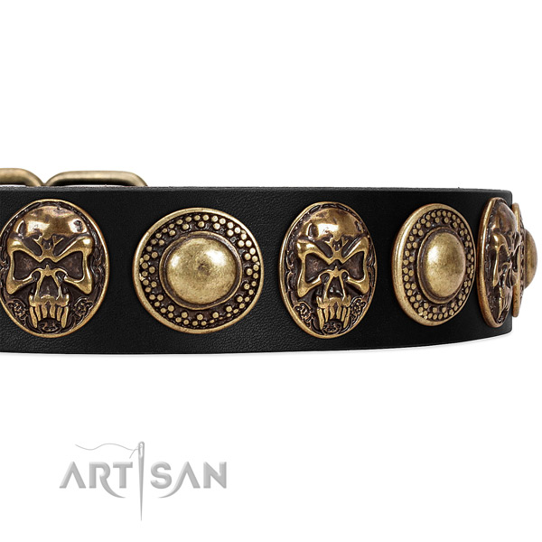 Genuine leather dog collar with adornments for daily use