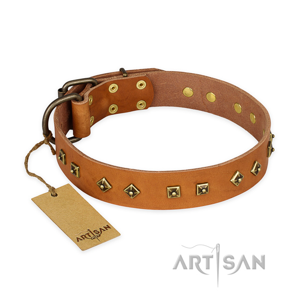 Easy adjustable leather dog collar with rust-proof hardware