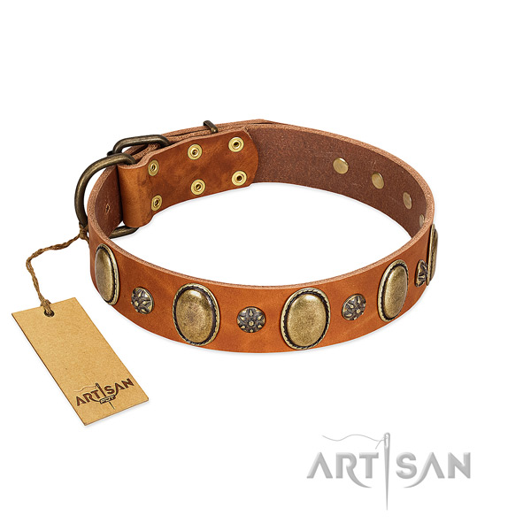 Everyday walking soft to touch genuine leather dog collar with adornments