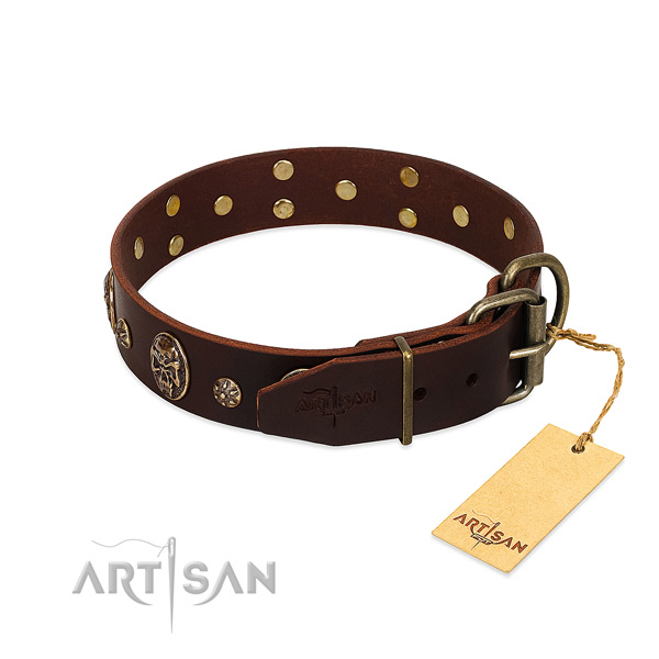 Reliable studs on genuine leather dog collar for your dog