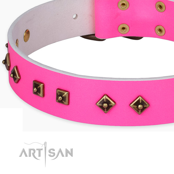 Decorated leather collar for your lovely four-legged friend