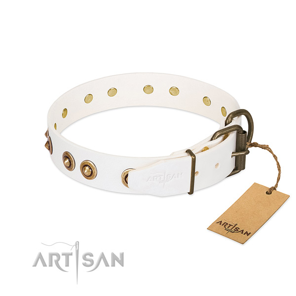 Rust-proof traditional buckle on genuine leather dog collar for your pet