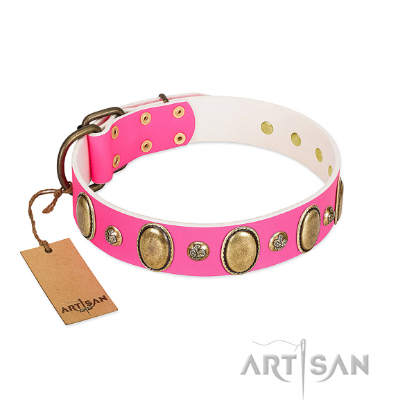 Full grain leather dog collar of soft to touch material with stylish embellishments