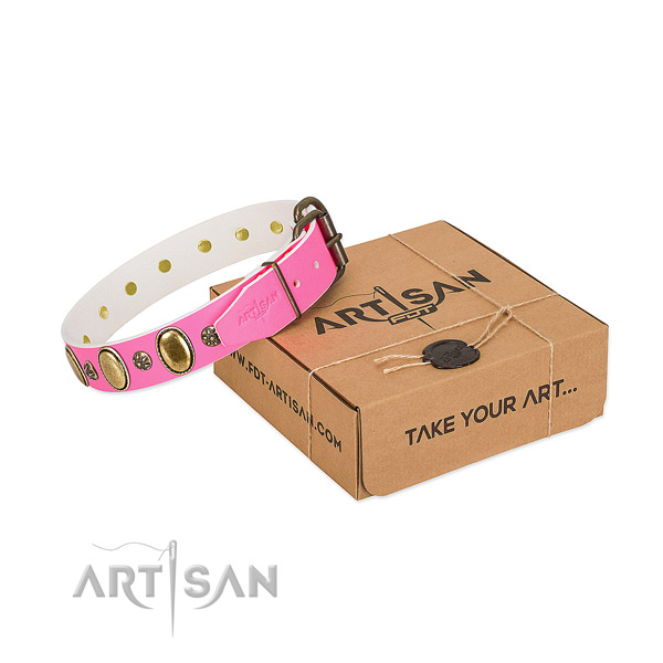 Fancy walking best quality leather dog collar with embellishments