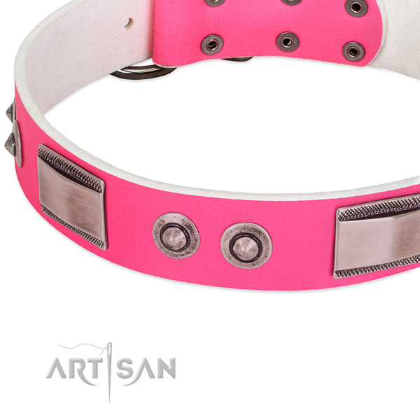 Fine quality leather collar with decorations for your four-legged friend