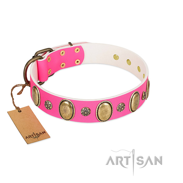 Reliable genuine leather dog collar with corrosion resistant fittings
