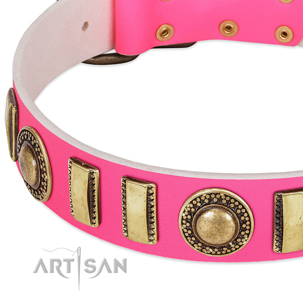 Reliable leather dog collar for your impressive pet