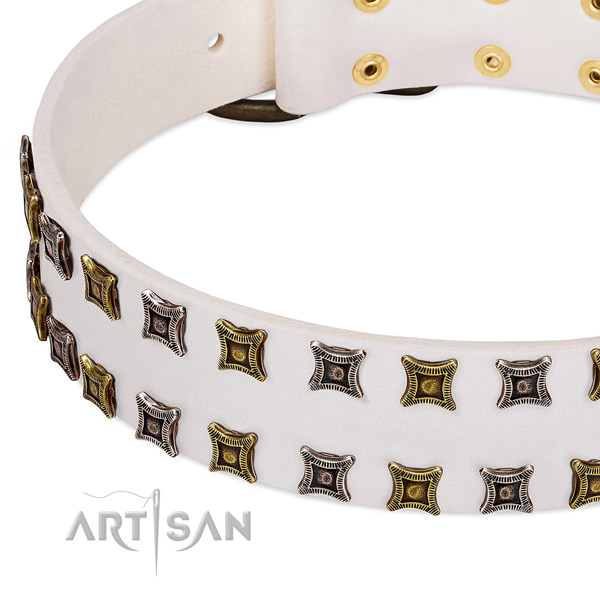 Durable natural leather dog collar for your handsome doggie