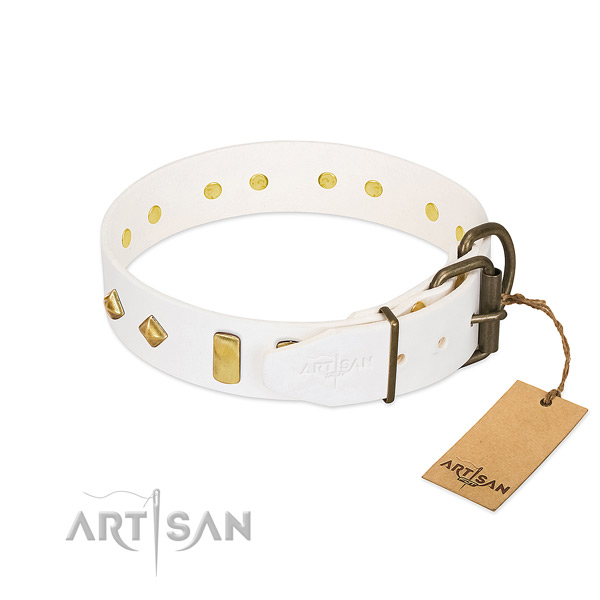 Reliable full grain leather dog collar with corrosion resistant buckle