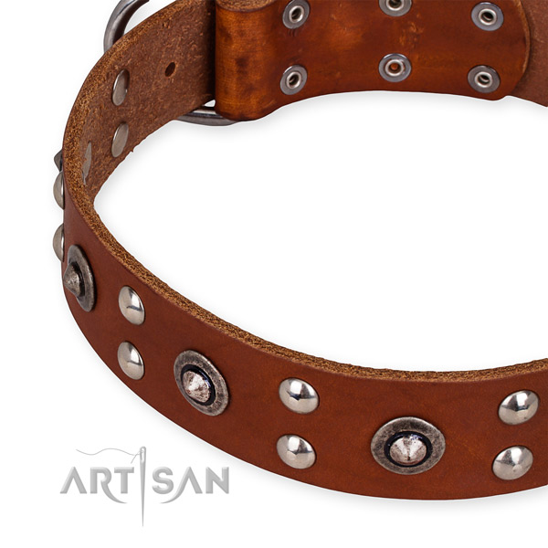 Full grain leather collar with durable fittings for your attractive four-legged friend