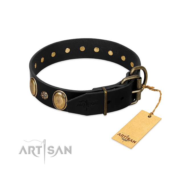 Daily walking quality leather dog collar