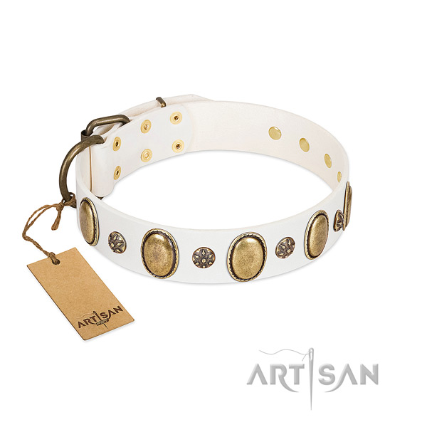 Fancy walking reliable natural genuine leather dog collar with studs