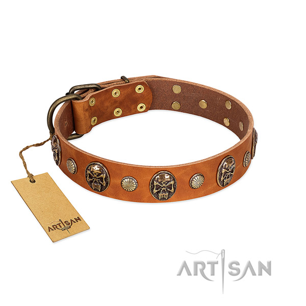 Perfect fit genuine leather dog collar for everyday walking