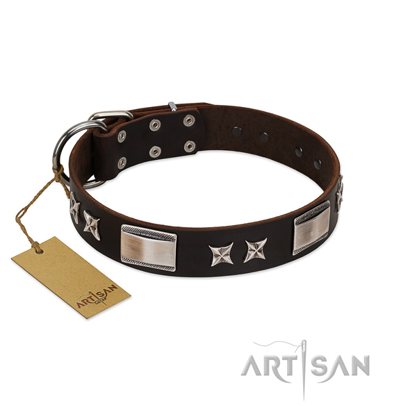Decorated dog collar of leather
