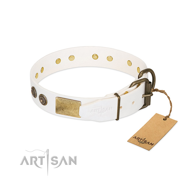Corrosion proof buckle on natural genuine leather collar for fancy walking your dog