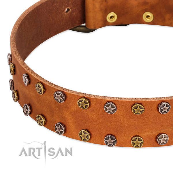 Easy wearing natural leather dog collar with amazing embellishments