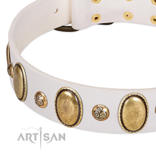 Leather dog collar with trendy embellishments