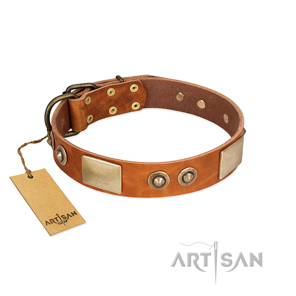Adjustable genuine leather dog collar for walking your pet