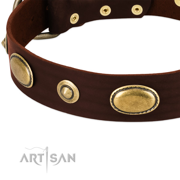 Strong traditional buckle on natural leather dog collar for your dog