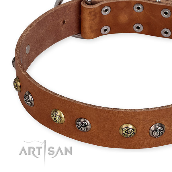 Natural genuine leather dog collar with top notch corrosion resistant embellishments