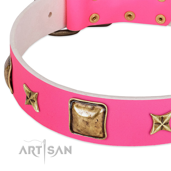 Full grain genuine leather dog collar with exceptional adornments