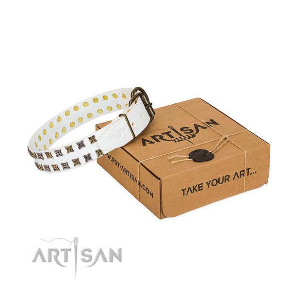 Genuine leather collar with stylish design studs for your canine