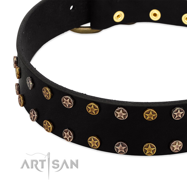 Top notch adornments on natural leather collar for your pet
