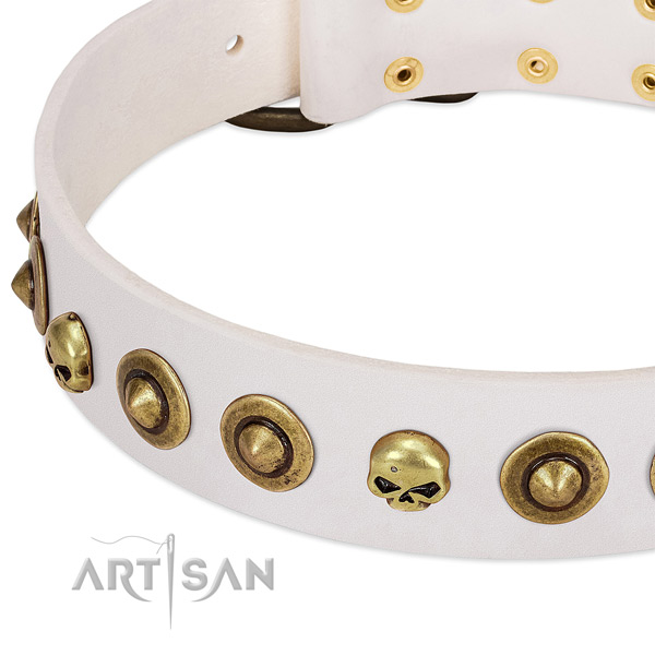 Stylish embellishments on full grain natural leather collar for your dog