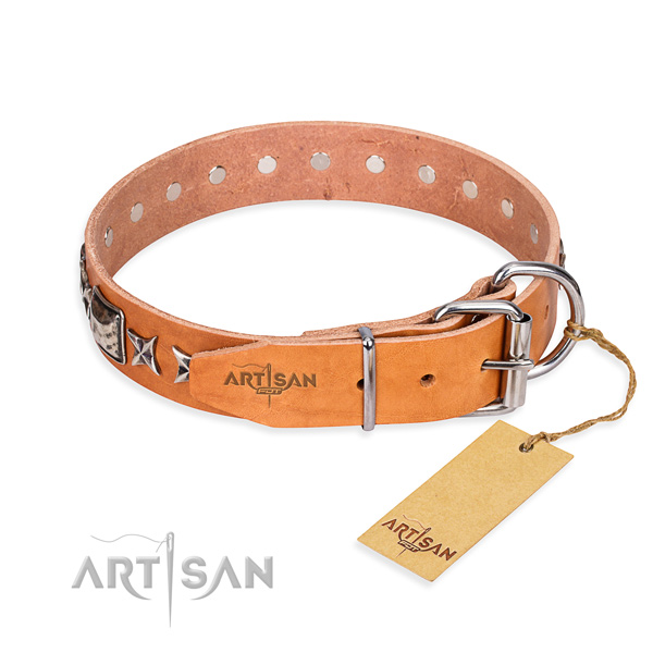 Quality decorated dog collar of genuine leather