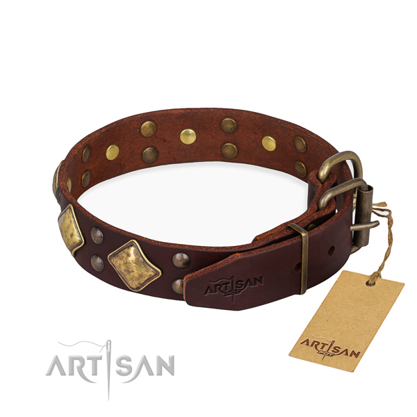 Genuine leather dog collar with fashionable corrosion resistant embellishments