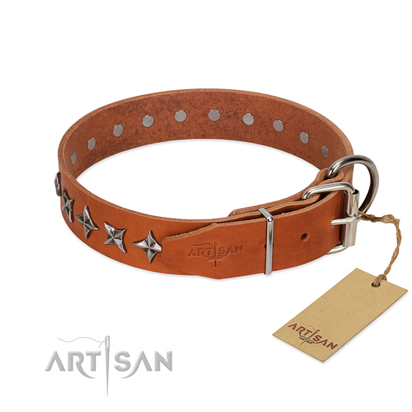 Comfortable wearing studded dog collar of finest quality genuine leather