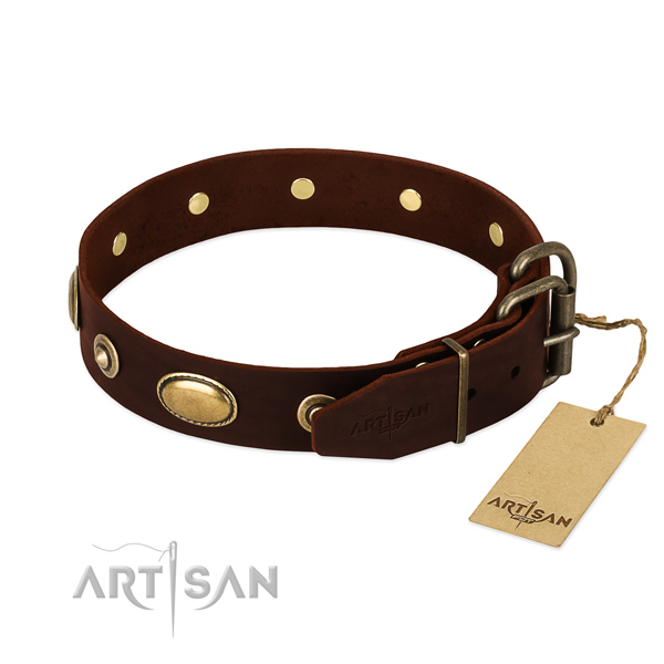 Corrosion resistant decorations on natural leather dog collar for your dog