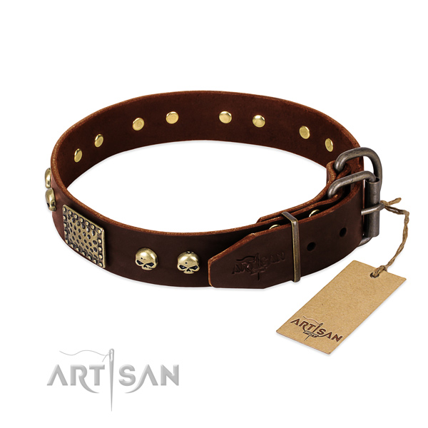 Rust-proof D-ring on easy wearing dog collar