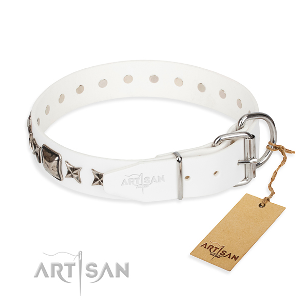 Quality studded dog collar of natural leather