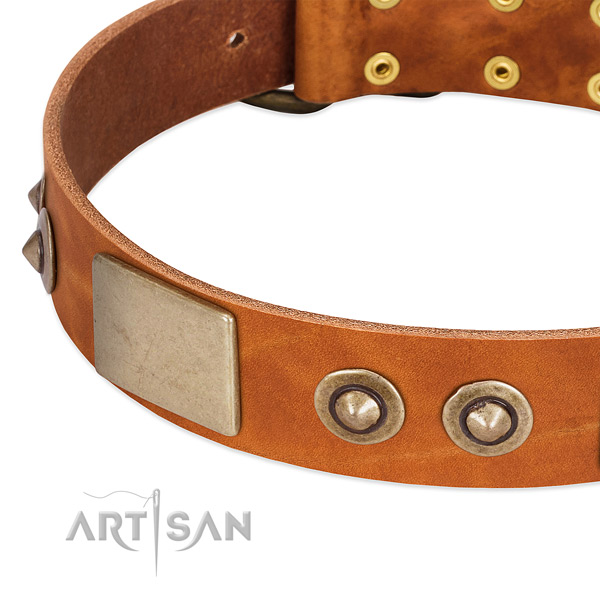 Reliable buckle on full grain natural leather dog collar for your dog