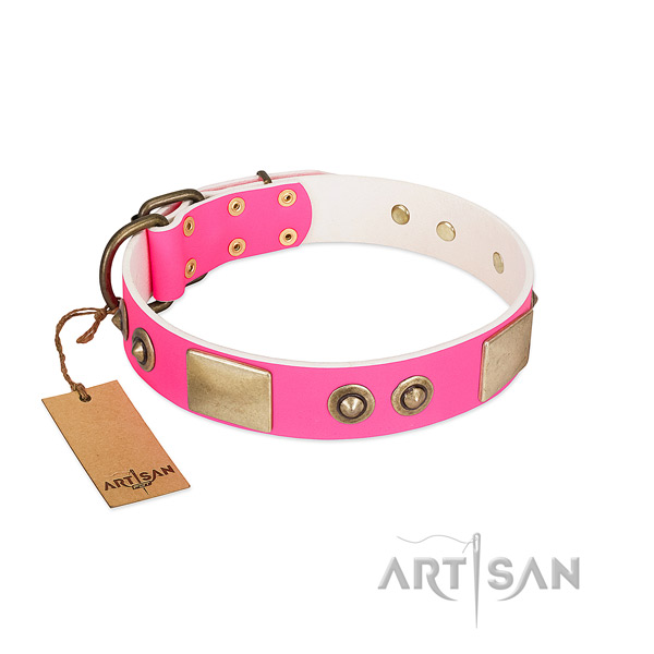 Corrosion proof traditional buckle on leather dog collar for your doggie