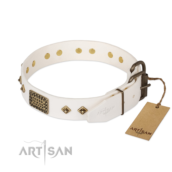 Full grain leather dog collar with durable buckle and decorations