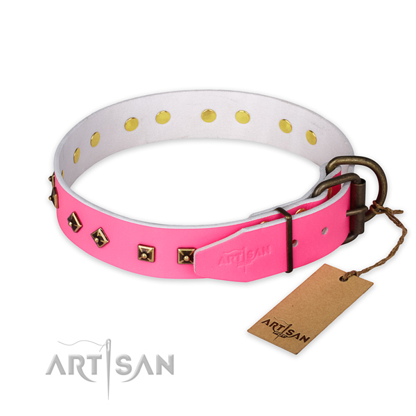 Corrosion proof traditional buckle on natural leather collar for basic training your four-legged friend