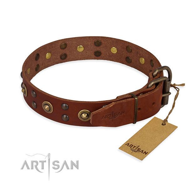 Reliable traditional buckle on genuine leather collar for your handsome canine