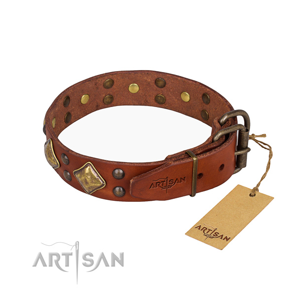 Full grain leather dog collar with fashionable corrosion proof adornments