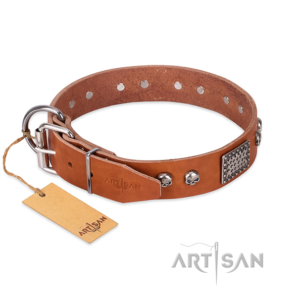 Strong fittings on daily use dog collar