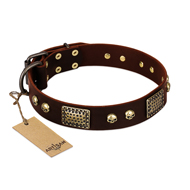 """Magic Amulet"" Brown Leather Siberian Husky Collar with Skulls and Plates"