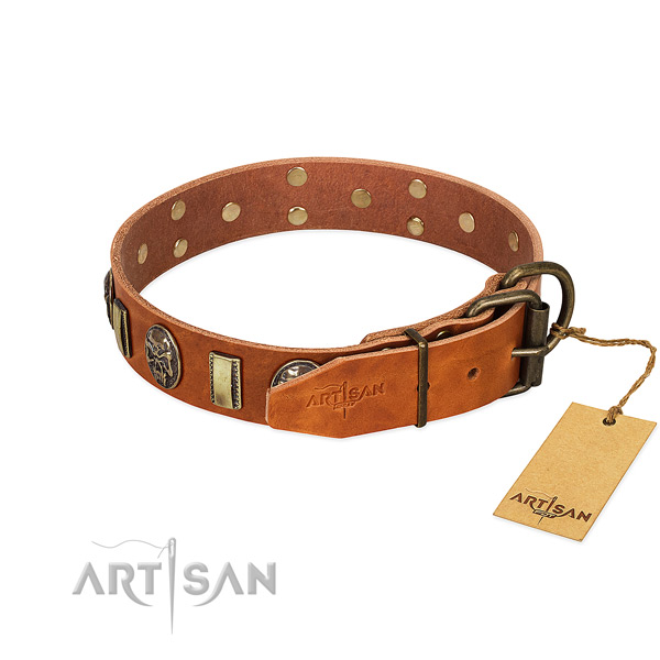 Leather dog collar with reliable fittings and studs