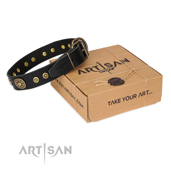 Full grain natural leather dog collar made of gentle to touch material with corrosion resistant hardware