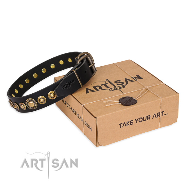 Strong full grain leather dog collar handcrafted for daily walking