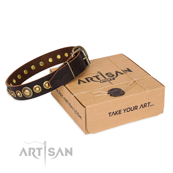 Gentle to touch full grain leather dog collar crafted for walking