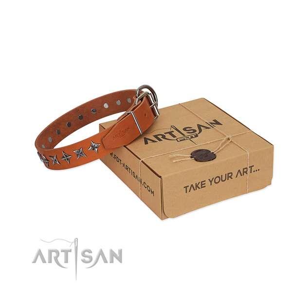 Everyday use dog collar of top notch full grain natural leather with decorations
